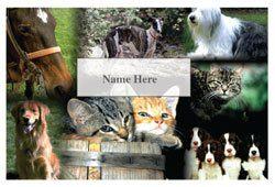 AnimalsScratchcard